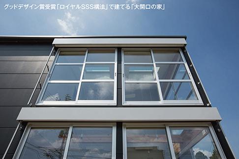 17-P-dai-1.jpg